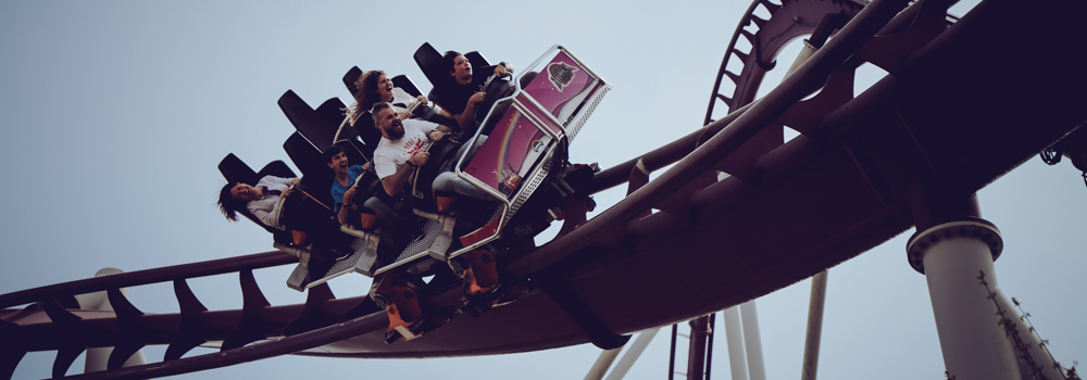 The Rules of the Roller Coaster… And Your Business